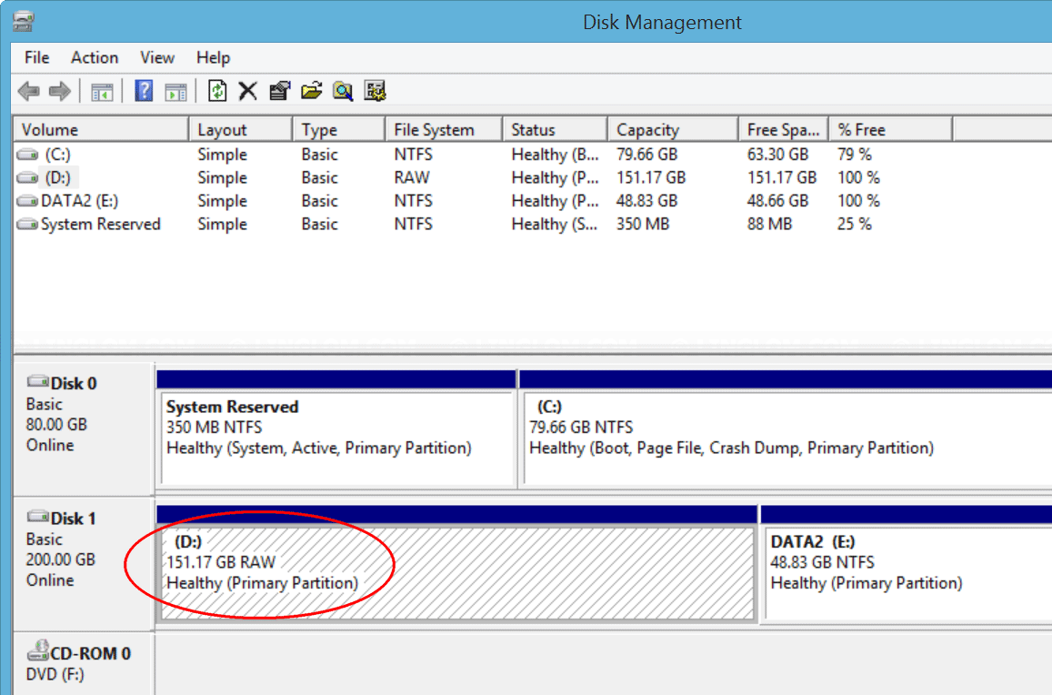 Healthy Primary Partition RAW in Disk Management