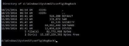 Registry Backup Directory