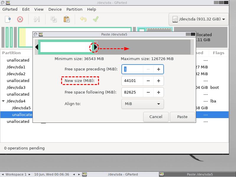 Resize Copied Partition